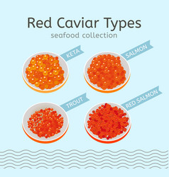 red caviar types vector image