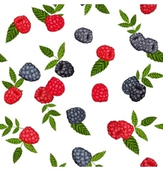 Seamless background blackberries and vector