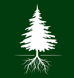 White christmas tree on green background vector