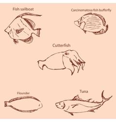 Marine inhabitants with names Pencil sketch by vector image vector image