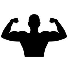 bodybuilder design vector image