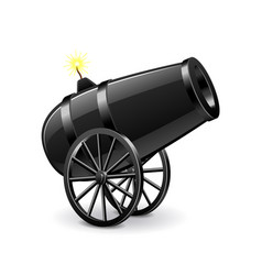 cannon isolated on white vector image