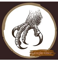 Eagle claw vector image vector image
