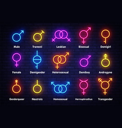 gender neon icons set sexual orientation concept vector image