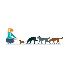 Girl volunteer in nursery for dogs care animals vector