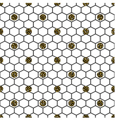 hexagon grid cells with glitter polka vector image
