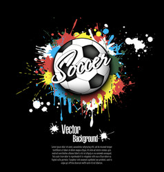 soccer ball and blots of paint vector image