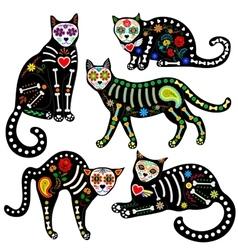 calavera cats set vector image