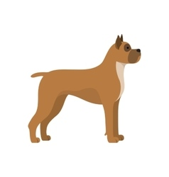 Dog boxer breed vector image vector image