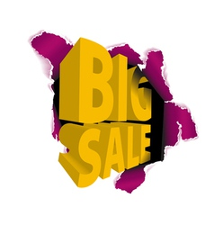 big sale discount vector image