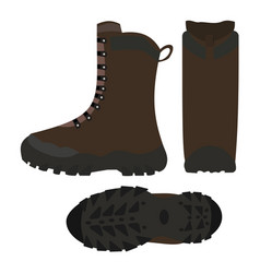 hiking shoes boots isolated vector image