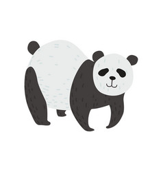 Cute panda bear standing on four legs happy vector