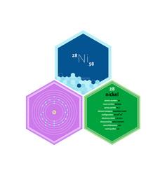 Infographics element nickel vector