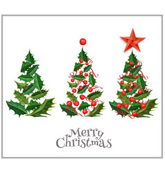 Realistic christmas tree holly xmas set vector