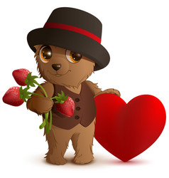 pretty brown bear in hat holds strawberry berry vector image