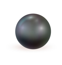 black realistic pearl isolated on white background vector image