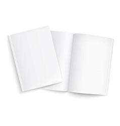 Couple of blank magazines template vector image