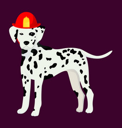 Dalmatian in the fair cask vector