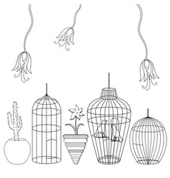 different cages and flowers vector image
