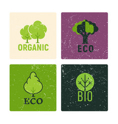 eco and organic labels design with grunge vector image