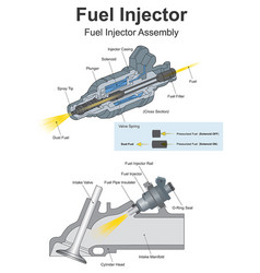 Fuel injector vector