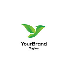 green leaf bird logo template vector image