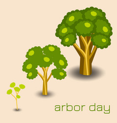 national arbor day stages of tree growth vector image