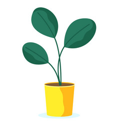 Plant in pot gift giving natural present vector