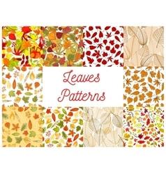Autumn fallen leaves seamless patterns set vector image
