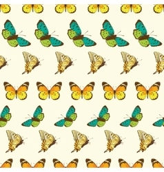 Butterflies Stripes Seamless Pattern vector image