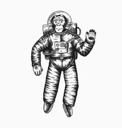 Monkey astronaut waving hand chimpanzee spaceman vector