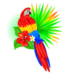 Parrot with palm leaf and hibiscus vector