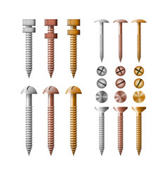 Set screws stainless steel copper and bronze vector