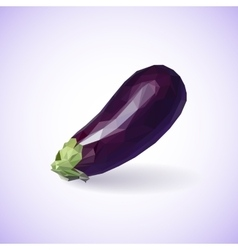 Unusual trendy poly style eggplant isolated on vector image