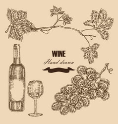 wine set hand drawn bottle of wine glass bunch vector image