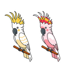 Yellow and pink cockatoos vector
