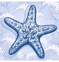 Sea star vector image vector image
