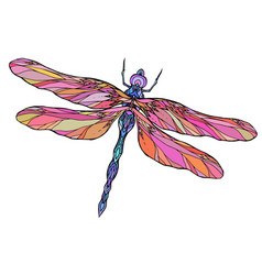 Colorful dragonfly with boho pattern elemen vector