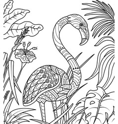 Flamingo in summer time coloring book vector