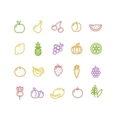 fruits and vegetables icon set vector image