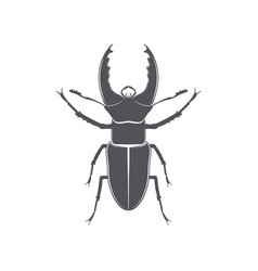 monochrome emblem of deer beetle isolated vector image