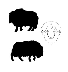 Musk-ox silhouettes vector