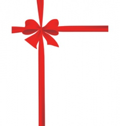 Packaging with a red ribbon vector