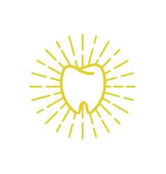 shining tooth logo vector image