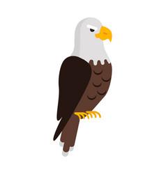 eagle large bird of prey cartoon isolated on white vector image