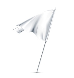 White flag vector image vector image
