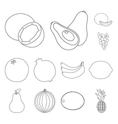 Different fruits outline icons in set collection vector