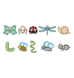 group garden animals kawaii characters vector image