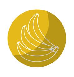 Sticker delicious babanas tropic fruits vector