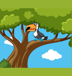 toucan bird stands on branch vector image